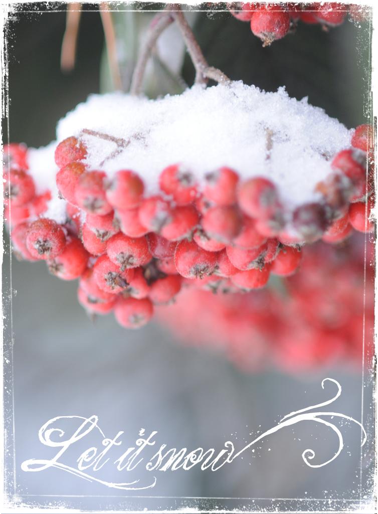 SnowPix2