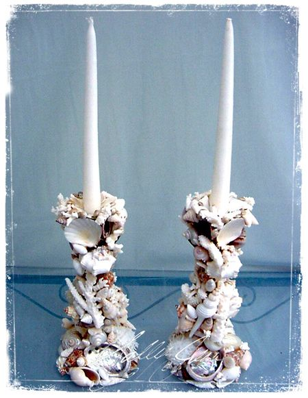 Shell12Candles