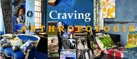 Cravinganthropologie1_3